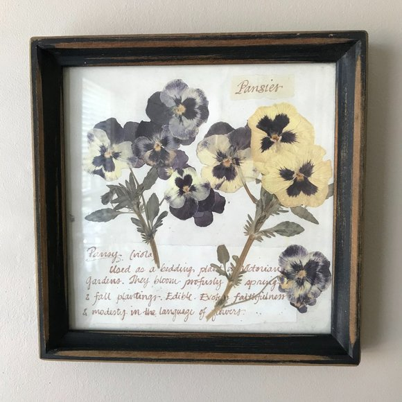 Pansy Print in Distressed Square Wooden Frame